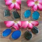 resin stainless seashells earrings color resin