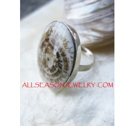 Tiger Shells Rings Silver