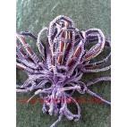 Nylon Woven Bracelet