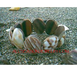 Natural Shells Bracelets Genuine