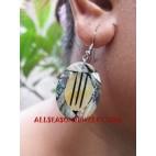 Earring Paua Seashell