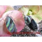Earrings Silver Seashells