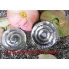 Seashell Earrings Silver