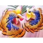 Fabulous Feather Fashion