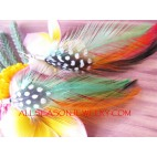 Ladies Feather Earring