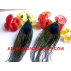 Peacock Earring Feather