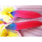 Red Feather Color Ear