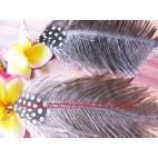 Ethnic Feather Fashion Ear
