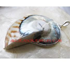 Tiger Shells Pendant silver