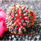 Beading Ring Handmade