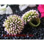 Fashion Beading Ring