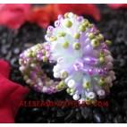 Handmade Beads Ring