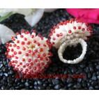 Ring Bead Handmade Bali