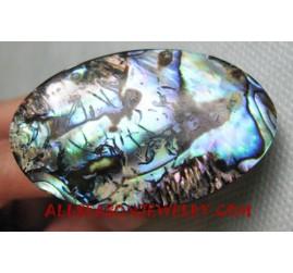 Shells Finger Ring Paua Abalone