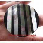 Zebra Shell Rings with Rezin