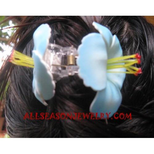 Hair Clips Ladies