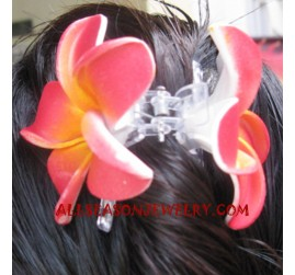 Ladies Hair Clip